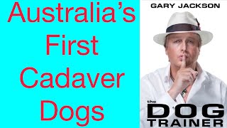 Australia's First Cadaver Dogs From Multi National K9