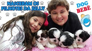 NASCERAM OS FILHOTES DA JULLY - Nossos cachorrinhos bebês ♥