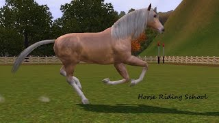 Sims 3 Horse riding school