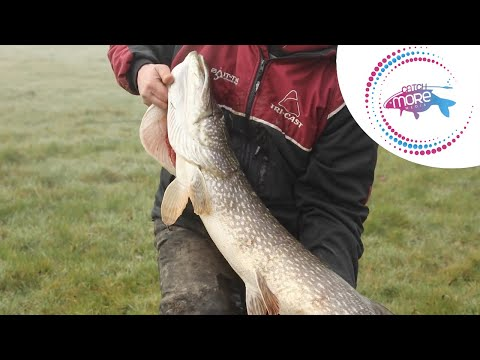 Pike Fishing On The River Wye
