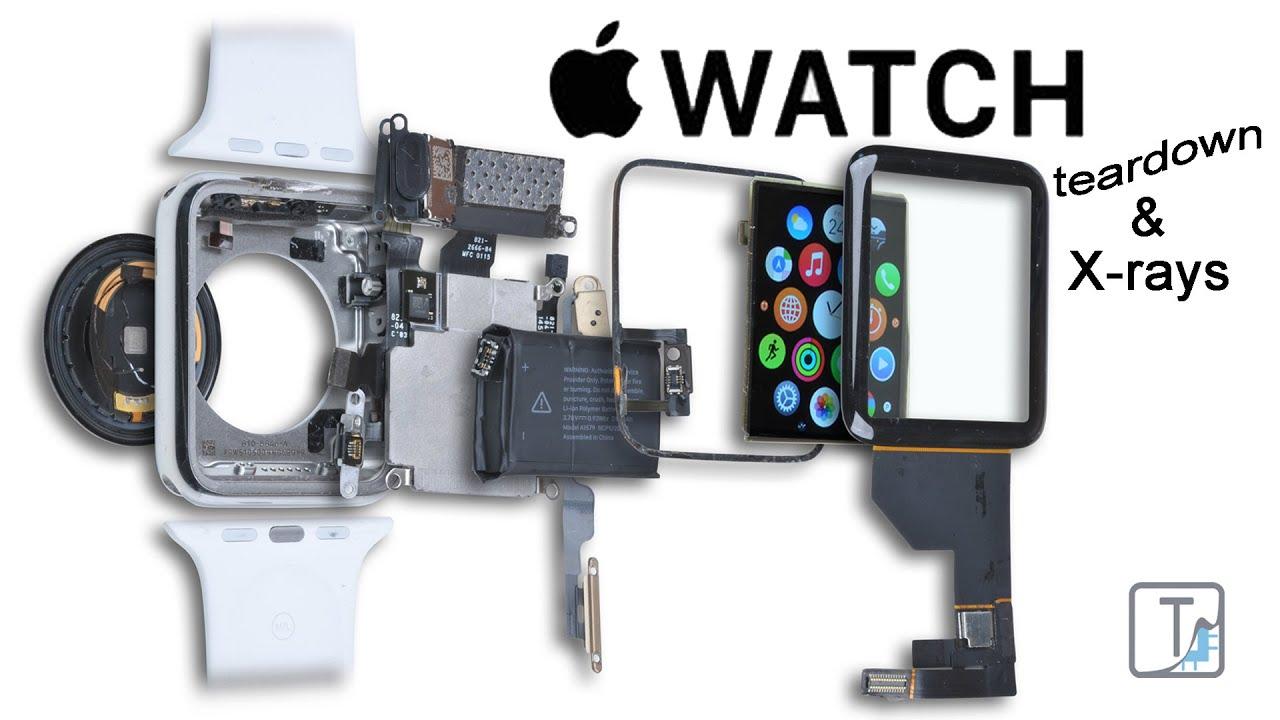 Teardown of the Apple Watch  What's Inside ?  YouTube
