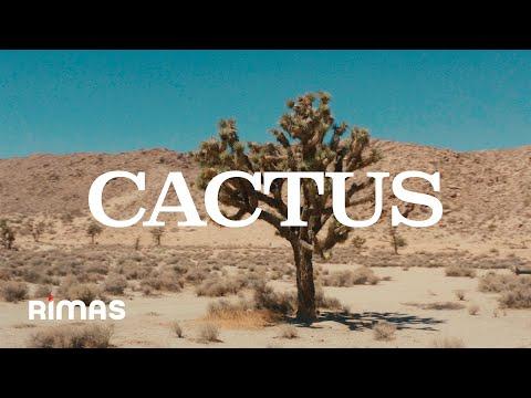 Смотреть клип Tommy Torres - Cactus
