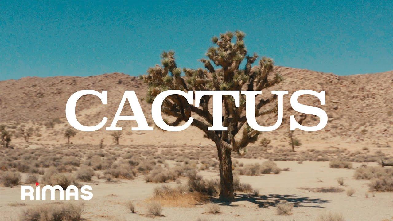 Tommy Torres - Cactus (Video Oficial)   El Playlist de Anoche
