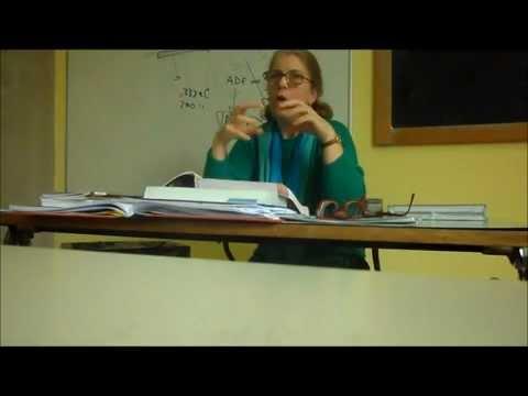 La prof. Valeri spiega il XXXIII canto del Paradiso - 1