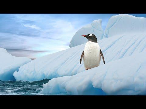 Winter Instrumental Music - Polar Icebergs