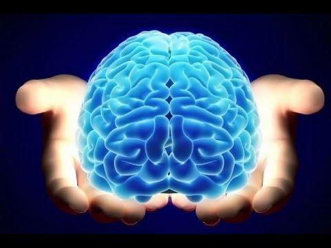 9 фактов о памяти и возможностях человеческого мозга