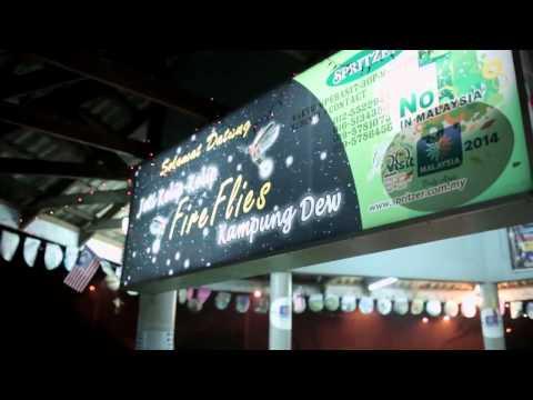 Taiping Travel and Kuala Sepetang Dolphin