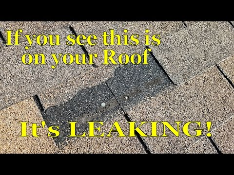 Asphalt Shingle Roof Leak Temp Repair Missing Tab Youtube