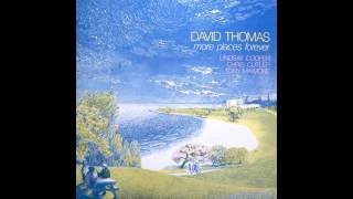 David Thomas and the Pedestrians - Enthusiastic