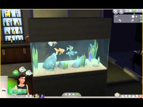 Sims 4 fish tank that 39 s about it youtube for Sims 4 fishing