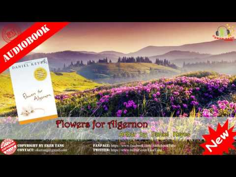 Flowers for Algernon by Daniel Keyes  Audiobook © EkerTang