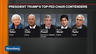Hawks and Doves: The Five Fed Chair Candidates