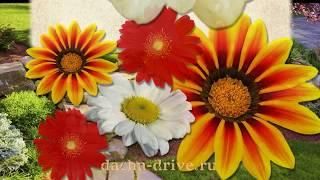 Смотреть видео Многолетние цветы для дачи: Фото с названиями. Каталог с описанием и рекомендациями