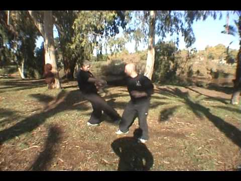 What is the best body type for Ba Gua Zhang martial arts ...