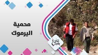 محمية اليرموك
