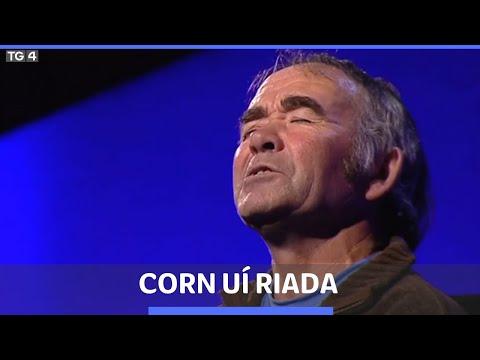 An Spailpín Fánach | Stiofán Ó Cualáin - Corn Uí Riada 2010