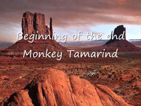 Beginning of the end - Monkey Tamarind