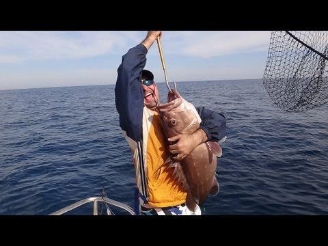 Pescaria Em Alto Mar De CHERNE E NAMORADO - Equipe Equipe Beluga / Rato&cia - 22 Julho 2012.