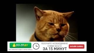 видео «Жилкредит»