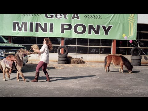 "Tires Plus - Everyday Convenience: ""Horsing Around"""