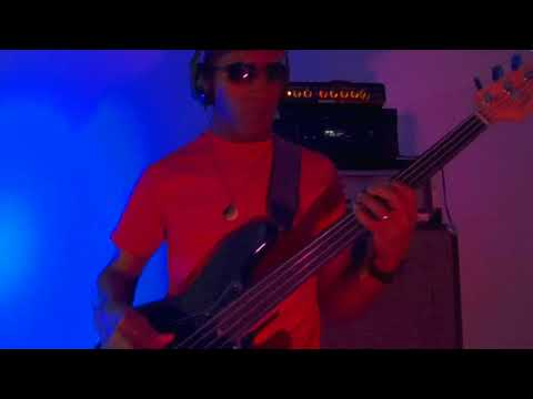"""ROXY MUSIC """"Take A Chance With Me"""" (bass cover)"""