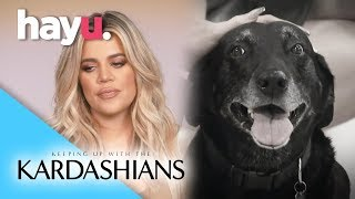 Khloé Mourns The Death of Her Dog | Season 15 | Keeping Up With The Kardashians