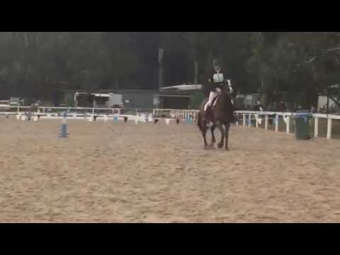 Chilean express doongala show jumping may 2016