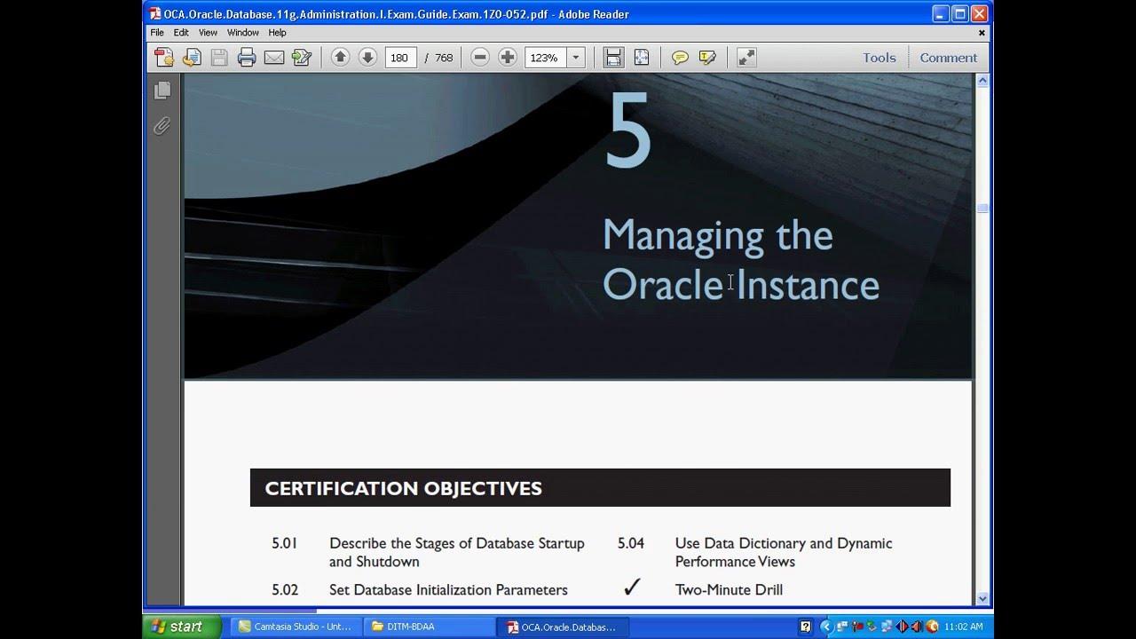 Dba pdf 11g oracle tutorial