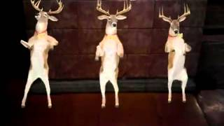 У меня дома танцуют олени(Все конечно подумали что это прикол ,ну кто нет увы, это моё первое видео выложил я это видео потому что не..., 2015-06-22T15:27:46.000Z)