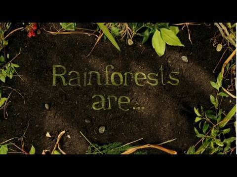 Rainforest Action Network Presents Who Cares About the Rainforests