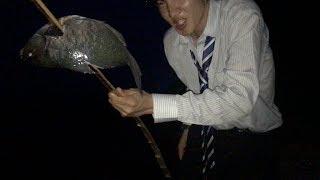【衝撃】拾った竹で魚を突く会社員 島で遭難#3