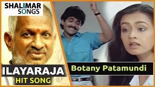 Mestro Ilayaraja Hit Song || Shiva Movie || Botany Patamundi Video Song || Nagarjuna, Amala