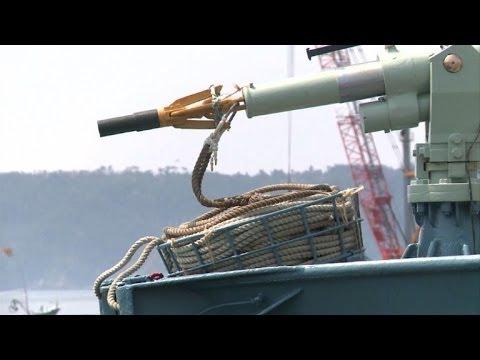 Balleneros japoneses vuelven al mar