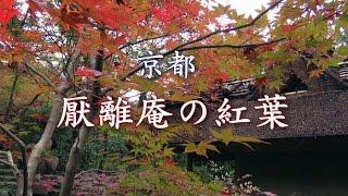 京都 「厭離庵の紅葉 」