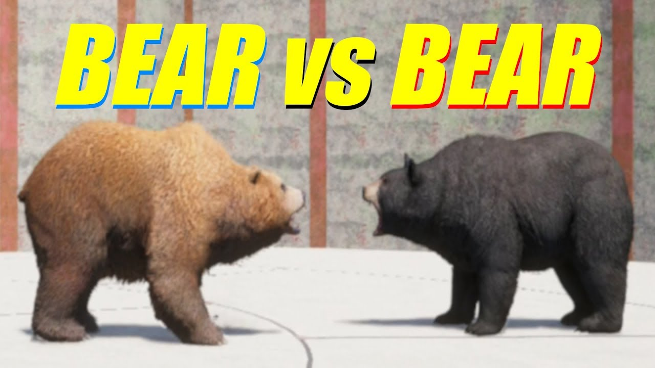 Animal Fight: Bear Vs Bear Battles (Map