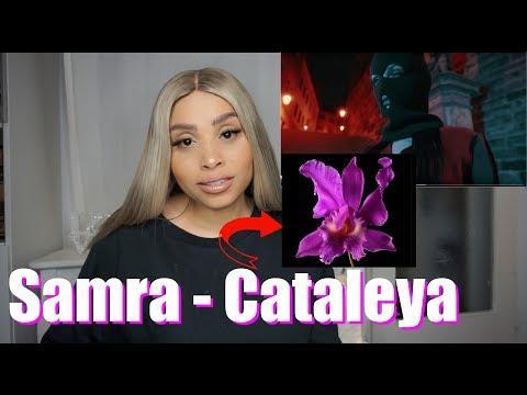 Emotionaler Sound - Samra - Cataleya - Jenny Live Reaction