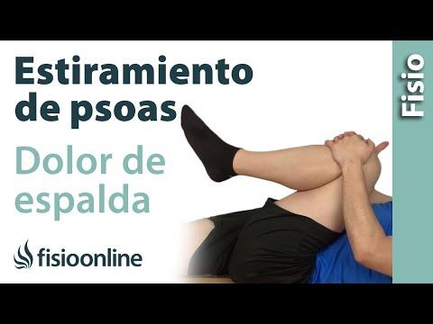 El complejo de los ejercicios a la curvatura de la columna vertebral