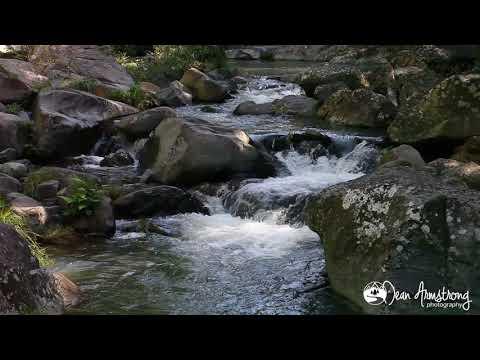 1HR HD Relaxation Cedar Creek #3