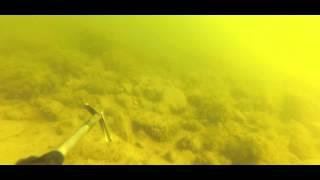 Подводная охота. АА, Море, Ида-Вирумаа, 21 апреля 2014 года