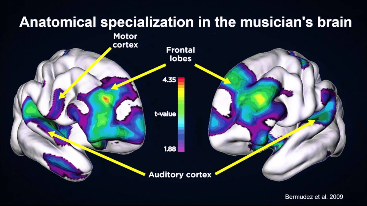 music on the brain Music boosts memory your brain is hard-wired to connect music with long-term memory specific brain regions linked to autobiographical and episodic memories and emotions are activated by hearing familiar music listening to music has been shown to significantly improve working memory in older adults.
