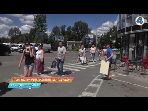 TV-4: 28 нелегальних мігрантів виявили правоохоронці Тернопільщини