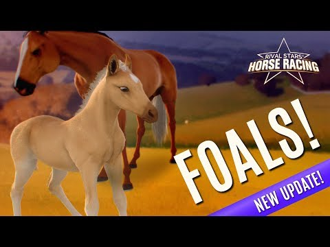 Rival Stars Horse Racing Developer Update Ep. 6 - Foals