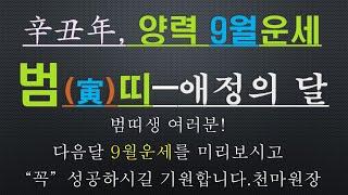 범띠-신축년 양력9월운세-사업운,금전운,건강운,010/4258/8864