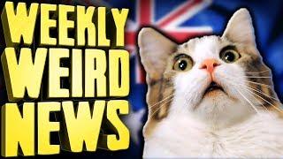 australia-s-bold-plan-to-kill-2-million-cats-weekly-weird-news