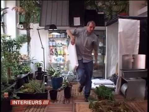 Make Indoor Garden How to make a urban garden ideas for plant wall indoor garden and how to make a urban garden ideas for plant wall indoor garden and terrace youtube workwithnaturefo