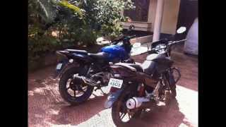 cbz vs pulsar rate the style