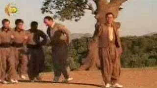 Kurdish - dance - hawrami