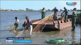 рыбалка в астрахани в декабре 2015 видео