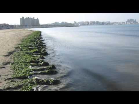 Songdo beach in Pohang, my hometown.