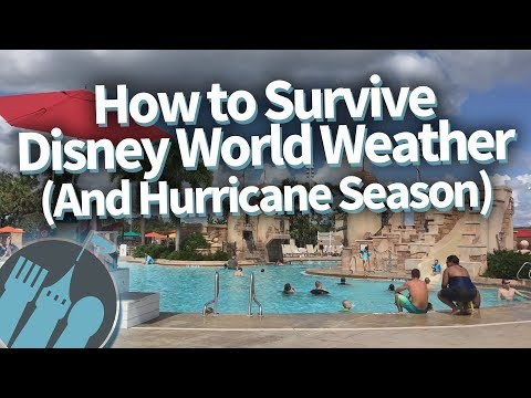 How To Survive Disney World Weather (And Hurricane Season)